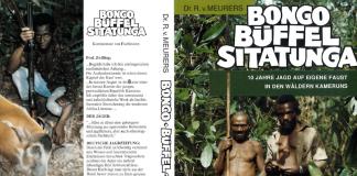 Bongo Büffel Sitatunga