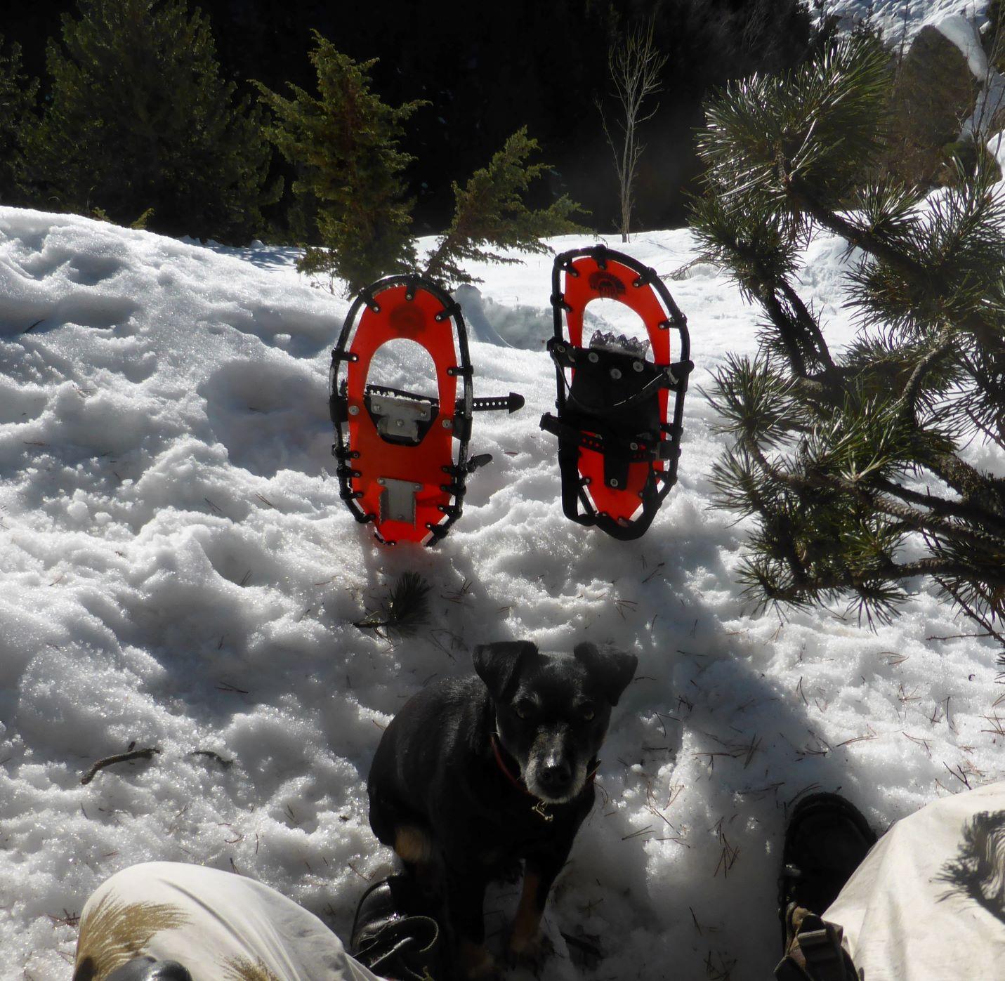 Leichte Schneeschuhe